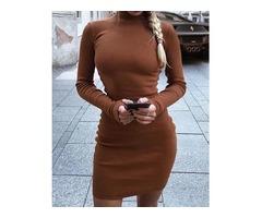 High Neck Skinny Long Sleeve Dress