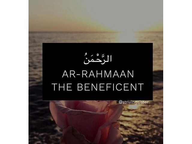 Islamic Books Online Store Uk | FreeAds.info
