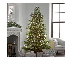 Attractive Christmas Tree Lights for Your Lovely Christmas