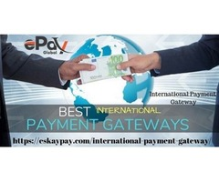 International Payment Gateway enlarges your risky business globally -ePay Global