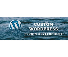 Get top-rated WordPress Plugin development by top WordPress Plugin Development company to empower yo