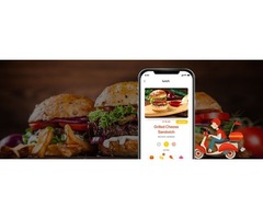 Everything you Want to Know Before Starting Food Delivery Mobile App