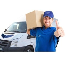 one day courier service near me