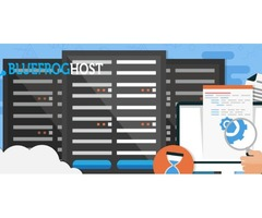 Shared Hosting Plans UK