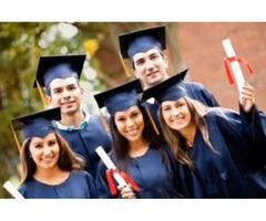 Online Assignment Help by Professional Experts at Global Assignment Help