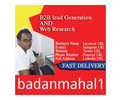I will provide b2b lead generation and targeted prospecting