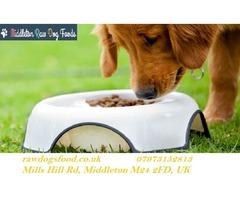 Natural Dog Diet Manchester