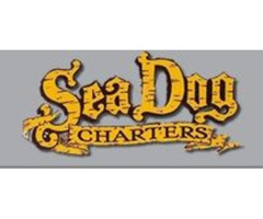 Sea Dog Professional Fishing Charters