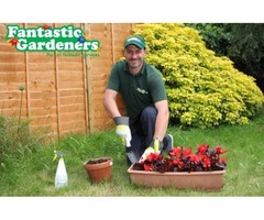 Fantastic Gardeners
